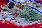 Sea Shells - A Variety Of Sea Shells From The Beach. Shells, Sea Colored Stones On A Red Towel On Th poster