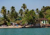 Coastline In Goa With Seawater Palms And Houses poster