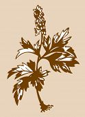 field flower silhouette on brown background, vector illustration