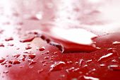 Water Droplets Wet On Red Cars Surface Hood, Water Drop On Red Texture, Water Drop Wet Close-up (se poster