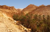 pic of tozeur  - Panoramic view of the Chebika oasis in the desert of Tunisia - JPG
