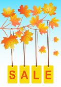 Autumn sale_