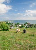 Klein-Zicker,Moenchgut,Ruegen Island,Germany