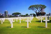 Military Garden Cemetery