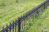 Metal Fence On A Grassy Glade
