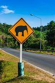 Постер, плакат: Дорожный знак «осторожно слонов» на треке