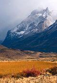 Otoño en la Patagonia. Parque Nacional de Torres Del Paine Chile