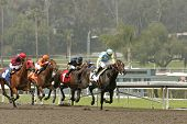 Pioneer Of The Nile Wins The San Felipe Stakes