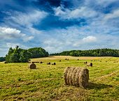 foto of hay bale  - Agriculture background  - JPG