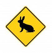 Road Sign - Rabbit Crossing