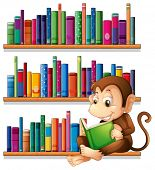 Illustration of a monkey reading in front of the bookshelves on a white background