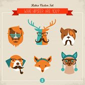 picture of mustache  - Cute fashion Hipster Animals  - JPG