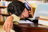 Schüler - junge Frau in Bibliothek mit Laptop lernen, sie ist erschöpft und schläft