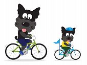 Dogs riding bikes