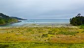 Mouth Of Big River In Mendocino County, California, Usa.
