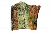 Hydrothermal Epidote Vein In Granite