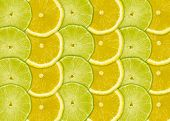Abstract Background With Citrus-fruits Slices Of Lemon And Lime