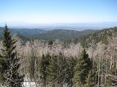 View From 12,075 Feet In The Santa Fe Mountains