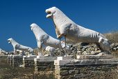 The Terrace Of The Lions On Delos Island In Greece