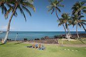 Hawaiian Paradise Resort