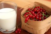 Red Currant In A Basket And Milk
