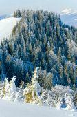 Winter Mountain Landscape