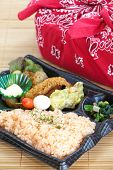 Contemporary Japanese ready-made lunchbox  bento box