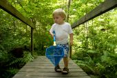 Little boy playing on bridge