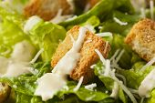 stock photo of romaine lettuce  - Healthy Green Organic Caesar Salad with Cheese and Croutons - JPG
