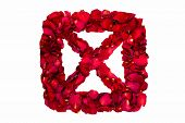 Red dried rose petals in a box forming X