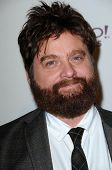 Zach Galifianakis  at the 14th Annual Hollywood Awards Gala, Beverly Hilton Hotel, Beverly Hills, CA. 10-25-10