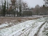 Snow And Trail In The Countryside