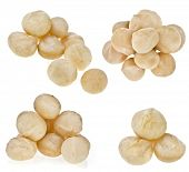 macadamia nuts heap close up isolated on white background