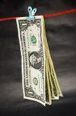 Clipped Dollar Bills