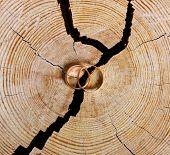 Wedding rings on broken wood.