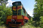 KIEV, UKRAINE -JUNE 20, 2014: Small railroad in the forest near Kiev. June 20, 2014 Kiev, Ukraine