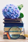 picture of bible story  - pile of vintage old books with blue hortenzia flowers  and finding glass - JPG