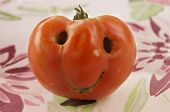 Friendly Tomato