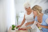 stock photo of housekeeping  - Housekeeper cleaning elderly woman - JPG
