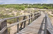 Beach Of Huelva
