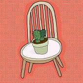 Cactus Plant On Chair