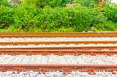 stock photo of railroad yard  - Background of many parallel railroad tracks and bushes - JPG