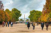 Place De La Concorde With Luxor Obelisk
