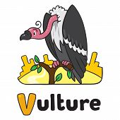Funny Vulture, Illustration For Abc. Alphabet V