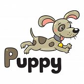 Little dog or puppy, for ABC. Alphabet P