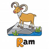 Little funny urial or ram, for ABC. Alphabet U