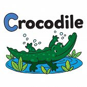picture of crocodiles  - Children illustration of funny alligator or crocodile swims in the small lake and the inscription  - JPG