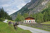 In the Stubai Mountains in Tyrol, Austria
