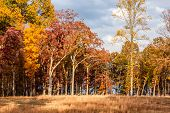 Autum Scene at Ball's Bluff Battlefield