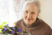 picture of stroll  - Portrait ofa smiling elderly woman with flower at home - JPG
